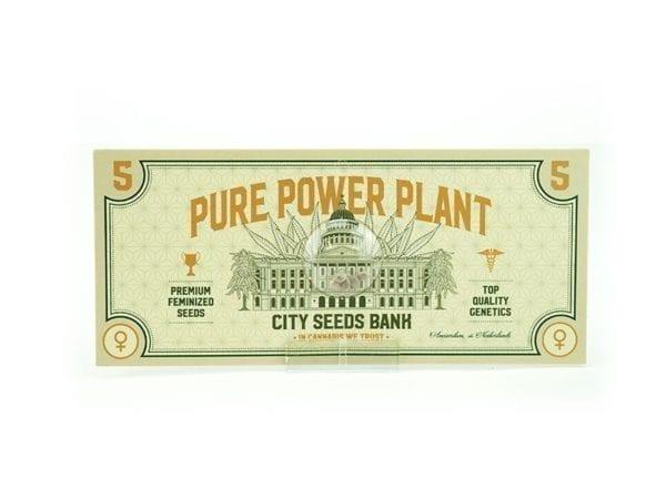 Pure Power Plant Feminized