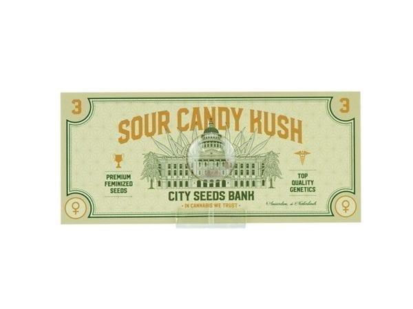 Sour Candy Kush Feminized